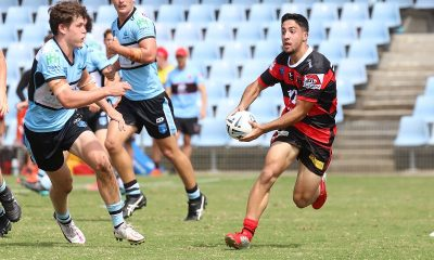 North Sydney Bears Mattys Cup Halfback looking for support in round 3 v Sharks at Shark Park (Photo : Steve Montgomery)