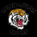 helensburg tigers logo